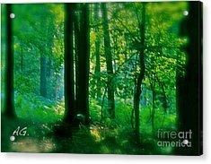 Cymes Spring At Galicia. Acrylic Print by  Andrzej Goszcz
