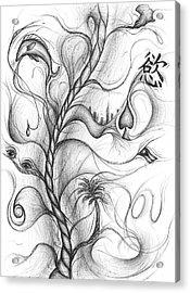 Cynthia Centipeda Acrylic Print by Michael Morgan