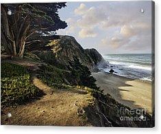 Cypress Beach Acrylic Print