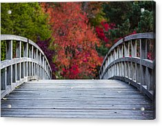 Acrylic Print featuring the photograph Cypress Bridge by Sebastian Musial