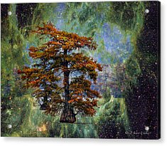 Cypress In All Its Glory Acrylic Print by J Larry Walker