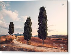 Cypress Lined Road In Tuscany Acrylic Print by Matteo Colombo