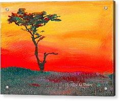 Cypress Sunrise Acrylic Print