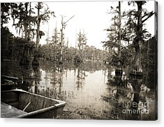 Cypress Swamp Acrylic Print by Scott Pellegrin