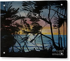 Cypress Trees At Sunset Acrylic Print