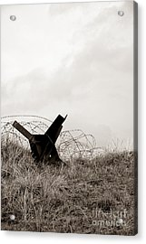 D Day Beach Acrylic Print by Olivier Le Queinec
