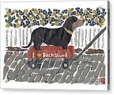Dachshund Art Hand-torn Newspaper Collage Art Acrylic Print by Keiko Suzuki