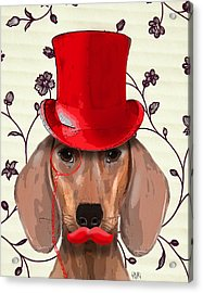 Dachshund Red Hat And Moustache Acrylic Print by Kelly McLaughlan