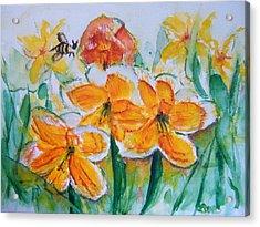 Daffies Acrylic Print