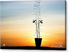 Daffodil Dawn Acrylic Print by Tim Gainey