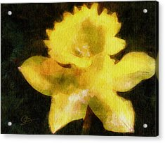 Acrylic Print featuring the painting Daffodil by Greg Collins