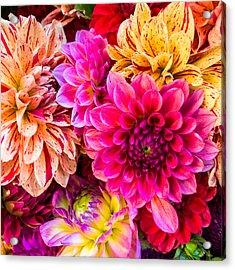 Dahlia Bouquet Number 3 Acrylic Print