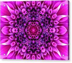 Dahlia Pink Star Mandala Acrylic Print