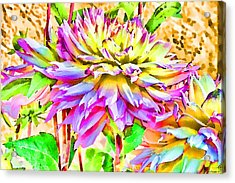 Acrylic Print featuring the photograph Dahlias In Digital Watercolor by Sandra Foster