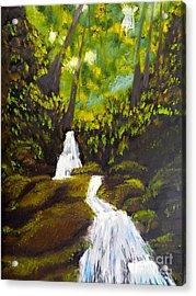 Daintree Natural Park Acrylic Print