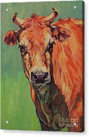 Dairy Queen Acrylic Print