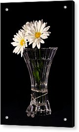 Acrylic Print featuring the photograph Daisies In Vase by Tracie Kaska
