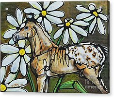 Daisies On My Britches Acrylic Print