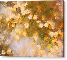 Daisy A Day 21 Acrylic Print by Julie Lueders