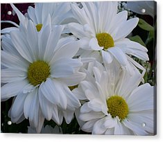 Acrylic Print featuring the photograph Daisy Bouquet by Belinda Lee
