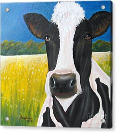 Daisy Cow Acrylic Print by Anastasis  Anastasi