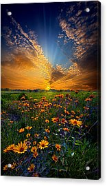 Daisy Dream Acrylic Print