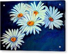 Daisy Fever  Pastel Acrylic Print by Antonia Citrino
