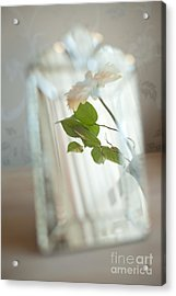 Acrylic Print featuring the photograph Daisy In The Mirror by Aiolos Greek Collections