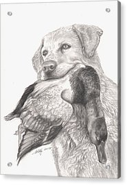 Daisy Acrylic Print by Kathleen Kelly Thompson