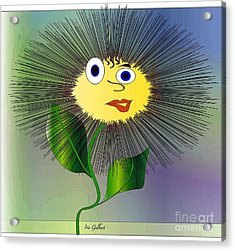 Daisy May Acrylic Print by Iris Gelbart