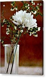 Daisy Mum On Red 3 Acrylic Print by Angelina Vick
