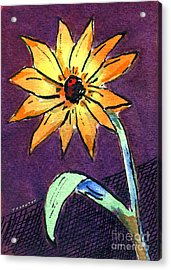 Daisy On Dark Background Acrylic Print