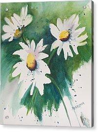 Daisy Print Acrylic Print