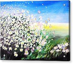 Daisy Acrylic Print by Svetlana Semenova
