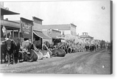 Acrylic Print featuring the photograph Dakota Territory, C1888 by Granger