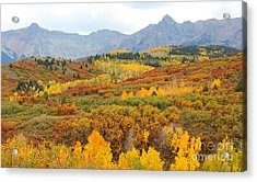 Acrylic Print featuring the photograph Dallas Divide In The Fall by Kate Avery