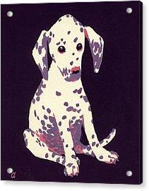 Dalmatian Puppy Acrylic Print by George Adamson