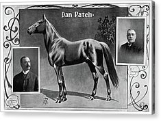 Dan Patch (1896-1916) Acrylic Print by Granger