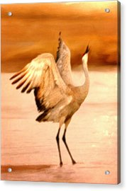 Dance Of The Crane Acrylic Print