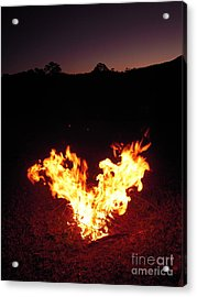 Acrylic Print featuring the photograph Fire In Your Heart by Ankya Klay