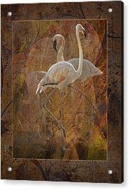 Dance Of The Flamingos Acrylic Print