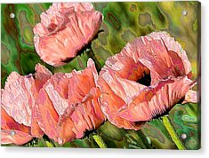 Dance Of The Poppies Acrylic Print