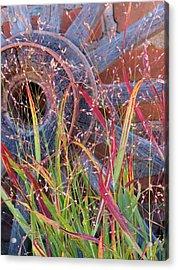 Dance Of The Wild Grass Acrylic Print by Feva  Fotos