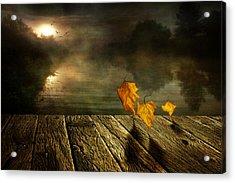 Dance To The Sun Acrylic Print by Veikko Suikkanen