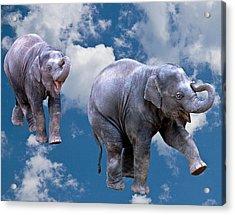 Dancing Elephants Acrylic Print