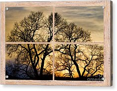 Dancing Forest Trees Picture Window Frame Photo Art View Acrylic Print by James BO  Insogna