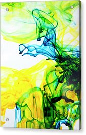 Dancing Horse Acrylic Print