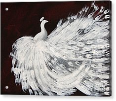 Dancing Peacock Burgundy Acrylic Print