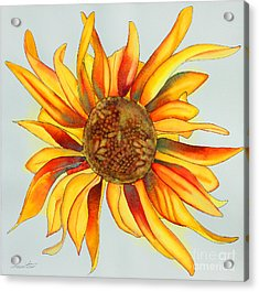 Dancing Sunflower Acrylic Print by Shannan Peters