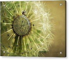 Dandelion Clock II Acrylic Print by Karen Casey-Smith